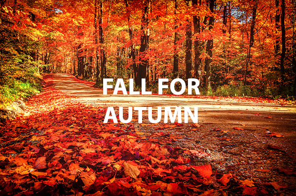 Las diferencias entre UK English y US English: Autumn vs Fall